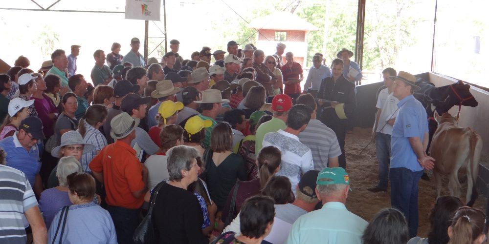 Emater/RS-Ascar Prepara Programação Voltada à Agricultura Familiar No 31º Hortigranjeiros