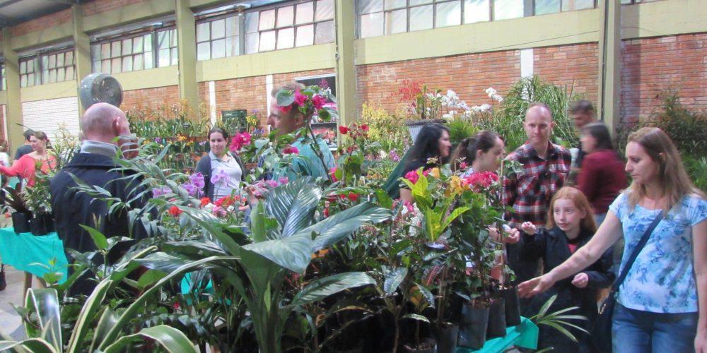 Pavilhão Da Floricultura Impressiona No 31° Hortigranjeiros